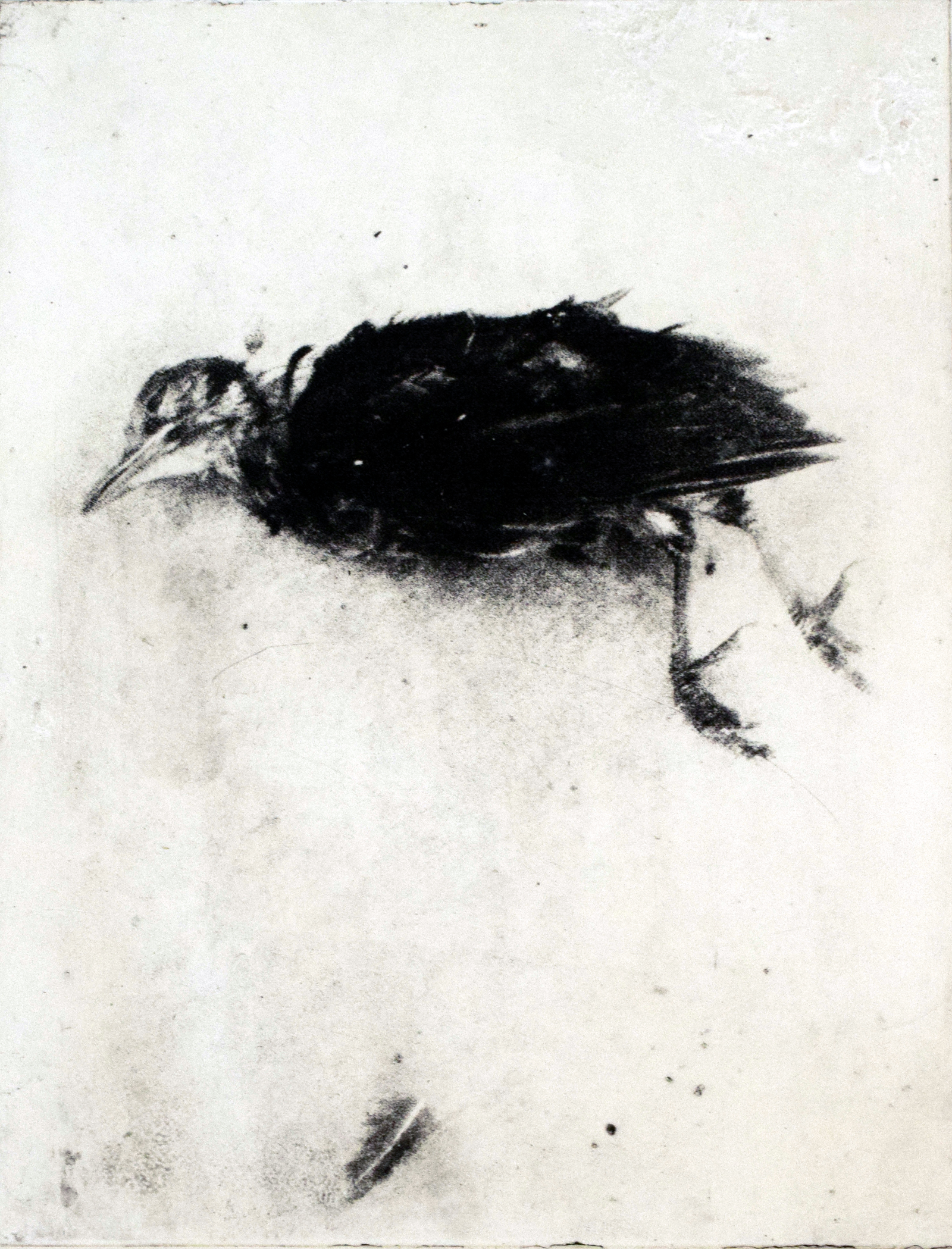Dood vogeltje vliegt weg